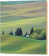Farm Buildings Nestled In The Palouse Country Wood Print
