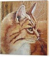 Farm Cat On Rustic Wood Wood Print