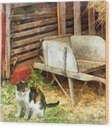Farm Cat Wood Print