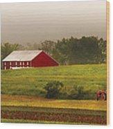 Farm - Farmer - Tilling The Fields Wood Print