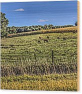 Farm Field Wood Print