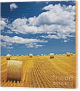 Farm Field With Hay Bales Wood Print
