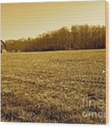 Farm Field With Old Barn In Sepia Wood Print