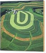 Farm Greens And Hillside Contour Plowing Wood Print