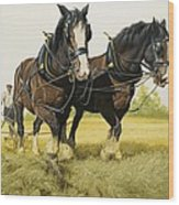 Farm Horses Wood Print