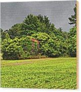 Farm Journal - Hidden History Wood Print