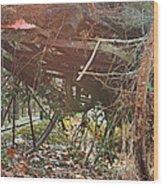 Farm Life Wood Print by Georgia Fowler