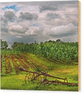 Farm - Organic Farming Wood Print
