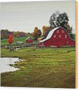 Farm Perfect Wood Print by Marty Koch