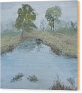 Farm Pond Wood Print