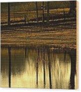 Farm Pond Reflections Wood Print
