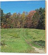 Farm Road In Autumn Wood Print