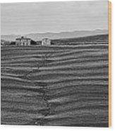 Farm Sienna Wood Print by Hugh Smith