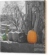 Farm Stand In Autumn Wood Print