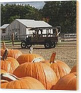 Farm Stand Pumpkins Wood Print by Barbara McDevitt