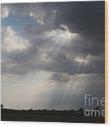 Farm Sunbeams Wood Print