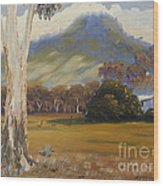 Farm With Large Gum Tree Wood Print