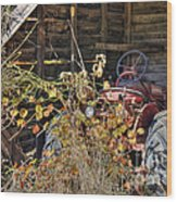 Farmall Find Wood Print