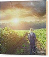Farmer Walking In Corn Fields At Sunset Wood Print by Sandra Cunningham