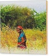 Farmers Fields Harvest India Rajasthan 2a Wood Print