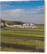 Farmer's Market And Green Fields Wood Print