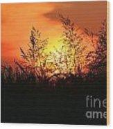 Farmer's Sunrise Wood Print