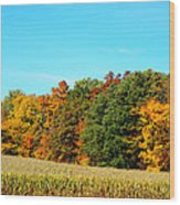 Farmfield Fall Wood Print
