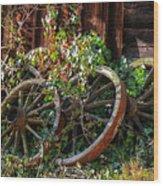 Farmhouse Memories Wood Print