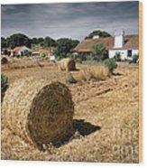 Farmland Wood Print by Carlos Caetano