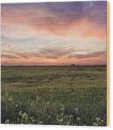 Farmland Sunset 1 Wood Print