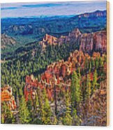 Farview Point Wood Print