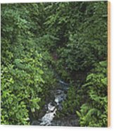 Fast River Wood Print