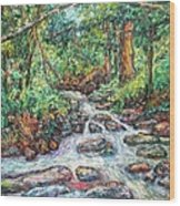 Fast Water Wildwood Park Wood Print by Kendall Kessler