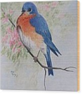 Fat And Fluffy Bluebird Wood Print