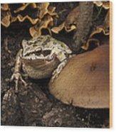Fat Frog Wood Print by Jean Noren