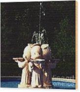Faux Precious Moments Fountain Wood Print