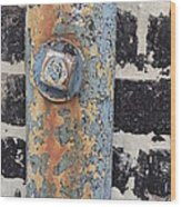 Fav Find 12/19/13 Wood Print
