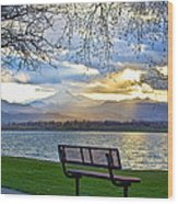 Favorite Bench And Lake View Wood Print