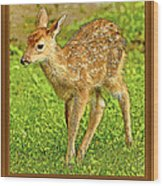 Fawn Poster Image Wood Print