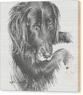 Black Dog Laying Pencil Portrait Wood Print