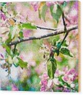 Feast Of Life 22 - Apple - The Beginning Wood Print