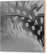 Feather 2 Wood Print