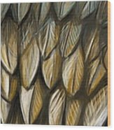 Feather 4 Wood Print