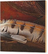 Feather And Leather Wood Print