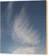 Feather Cloud  By Diane Schiabor Wood Print