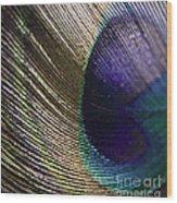 Feather Fan Wood Print
