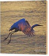 Feather-light Wood Print