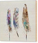 Feathers Wood Print by Bri B