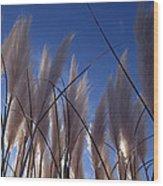 Feathery Wood Print