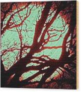 Featured Sun Peaceful Zentree Rest Wood Print